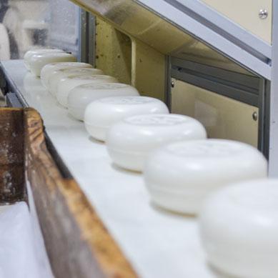 Soap Manufacture